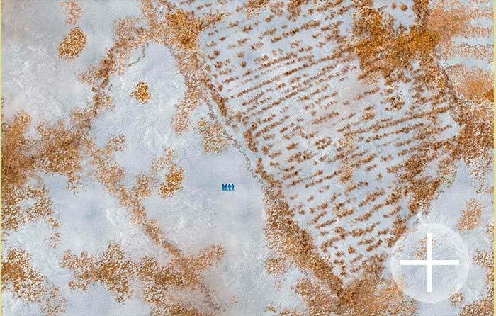 The Winter Fields (bm0266wn) The Battlemat 6x4 (6mm / 10mm)