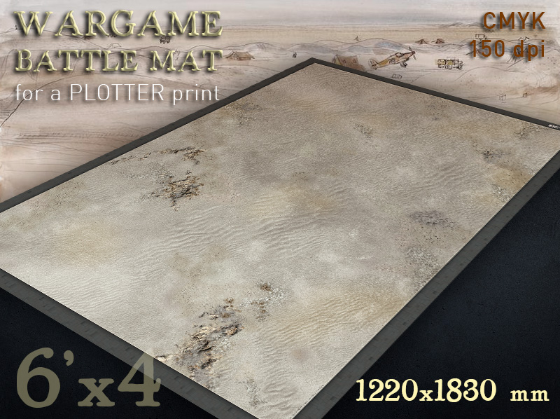 Wargame Print - The buildings models and the fields of the