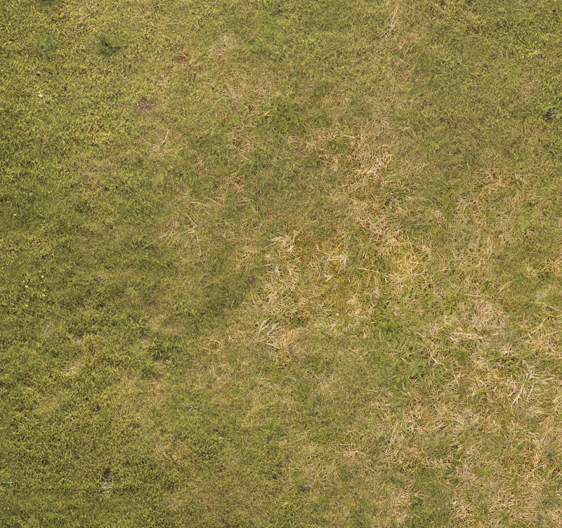 Grass Plain 015 Print The Battlemat For Wargames Or Rpg